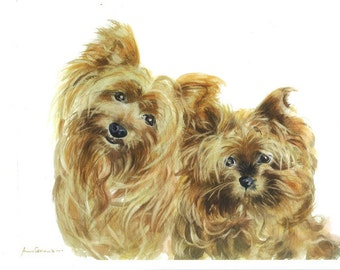 Terriers Watercolour Print - A3 - Two Scamps, Yorkshire Terriers