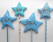 It's Written in the Stars- wedding cake topper