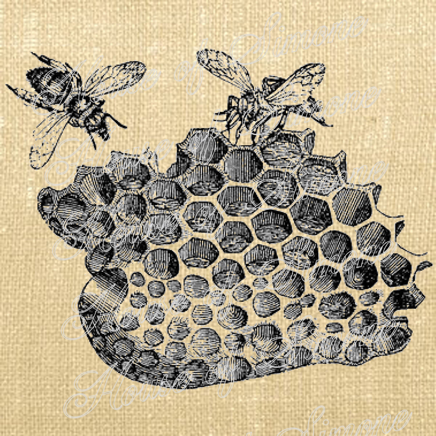 Bee Beehive Insects Honeycomb Vintage Download Graphic Image