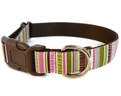 Cute Dog Collar, So Pretty for Girls in Pink, Brown and Green Stripes - Spring Fling