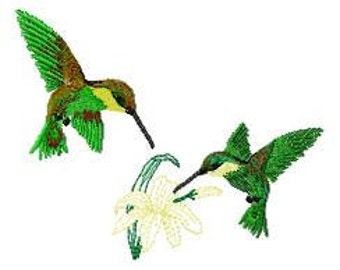 2 Hummingbirds Embroidery Design - Instant Download
