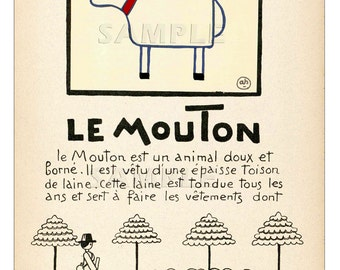 Sheep - Le Mouton - Vintage French   Print - 11 x 15 inches