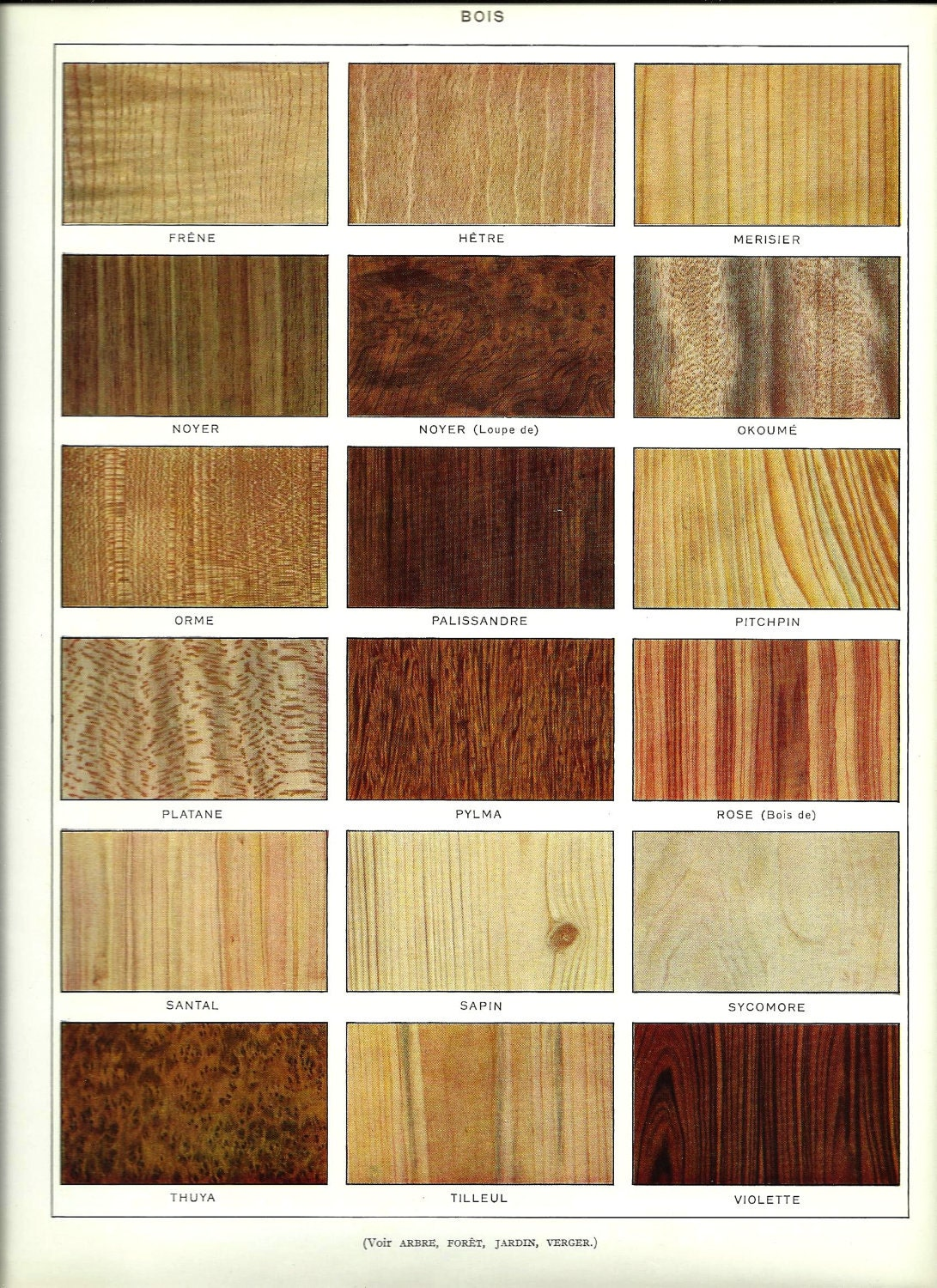 Yellow Pine Kitchen Cabinets Yellow Pine Kitchen Cabinets Wall Colors Trend Home Design And