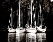 Nautical / Boat Photograph - 11x14 unmatted, unframed (landscape, boating, BC Canada)
