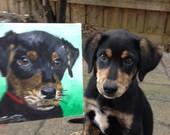 YOUR Dog - Custom Dog Portrait on 6x6 canvas