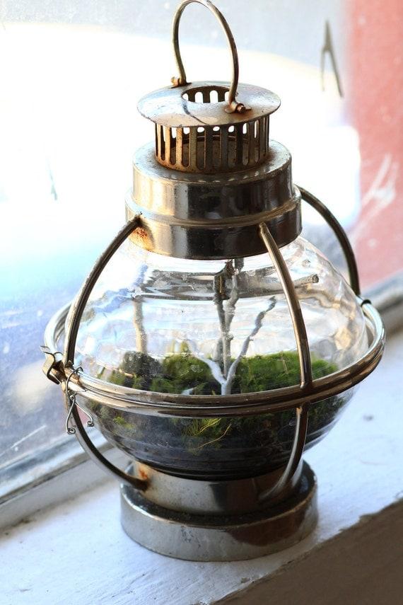 forest globe lantern living terrarium and by bakerkristen on etsy. Black Bedroom Furniture Sets. Home Design Ideas