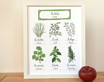 Herbs print 11x14 art print - Modern French Kitchen - Gift for a Foodie Aromatics Chef Gourmet Green GeraldineAdams