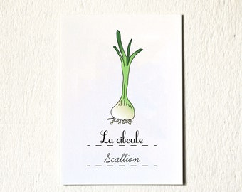 Kitchen Art 'Scallion' vegetable Food Art Print 5x7 GeraldineAdams culinary Green Botanical Gift