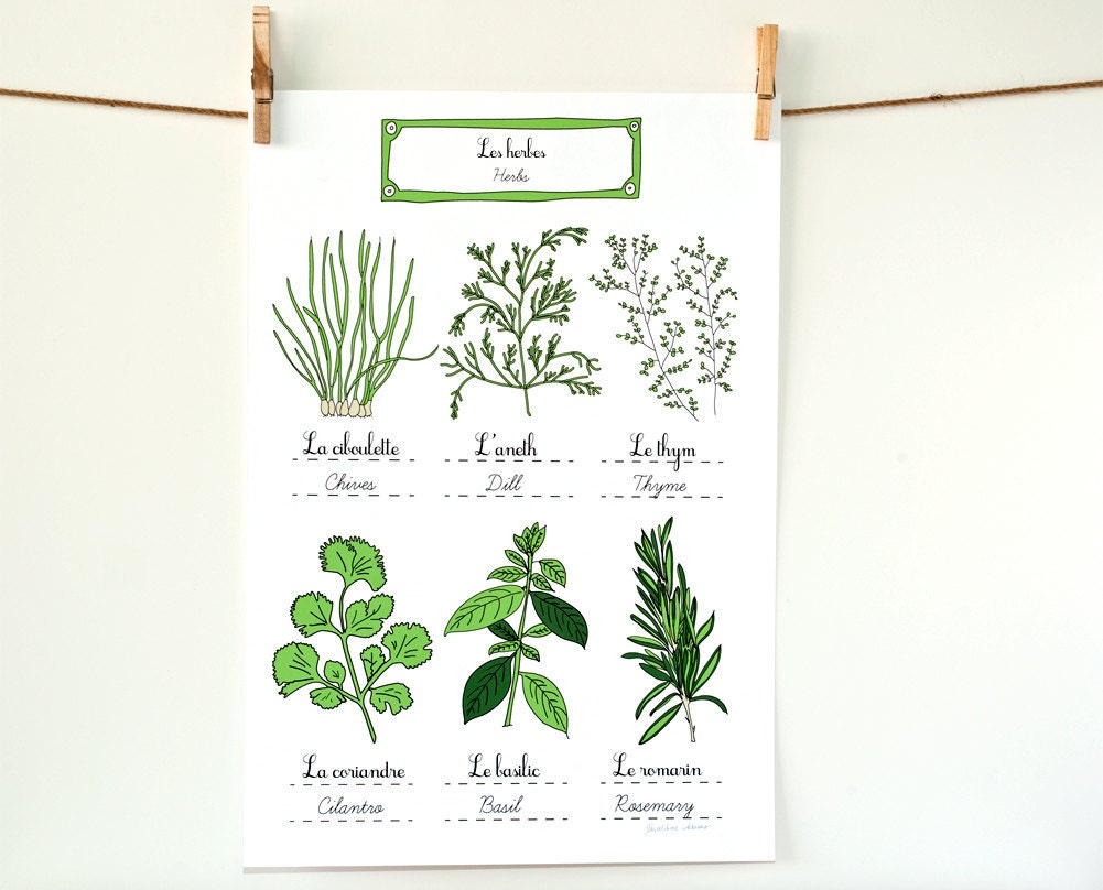 Herbs french kitchen art poster green home decor botanical for French kitchen artwork
