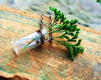 Necklace. Miniature Tree in Jar