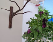 Decorative branch plant hanger