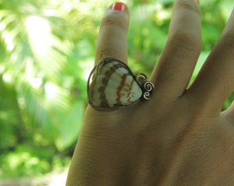 Shells and Stripes ring