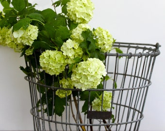 Vintage wire basket for storage