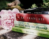 French Books and Peony Photo - Pink, Green, Red - For Her - Francophile -  Vintage Books - 8 x 10 -  Fine Art Photo - BrookeRyanPhoto