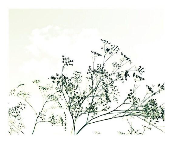 Minimal Shrubs - Black and white Botanical Print, Nature Poster, minimalist art, art for bedroom