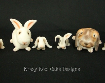 Bunny Rabbit Cake Toppers