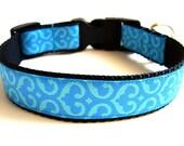 Blue Dog Collar Colorful Dog Collar