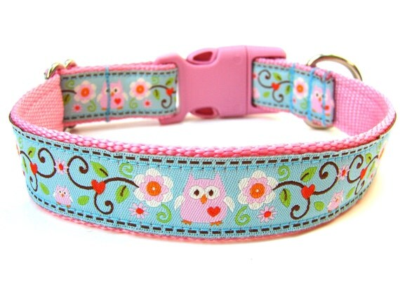 Owl Dog Collar Pink and Blue Owl Dog Collar