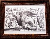 Griffin Line Art from the 1600's Art Print on Drawing Paper
