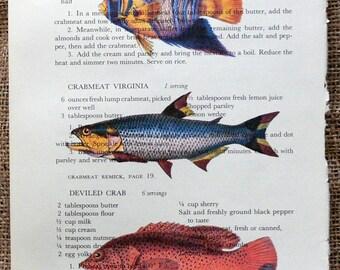 Multi Colored Fish Art Print on Random Page of Vintage Cookbook