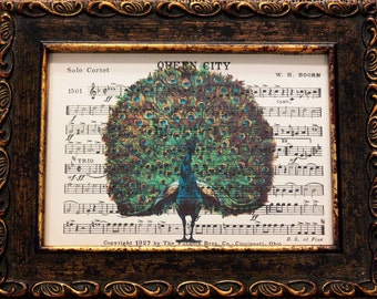 Peacock Art from 1910 Art Print on Old Marching Band Music Sheets