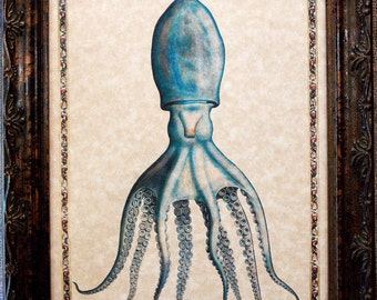 Octopus with Border Art Print from 1558 Art Print on Parchment Paper