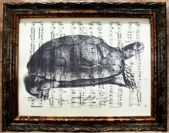 Asian Brown Tortoise Art Print on Antique Music Book Page