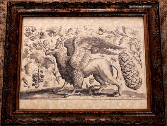 Griffin Line Art from 1600's Art Print on Parchment Paper