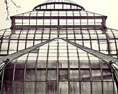 Detroit Photography - Belle Isle Conservatory - Fine Art Print