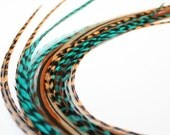 "Feather Hair Extension, 5 pc, Western Teal, 8-10"" LONG, free micro link beads"