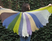Josephine's Shawl of Many Colors