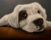 Elizabeth Barrett Commissioned Oil Painting Dog Cat Horse Custom 11x14 PET PORTRAIT