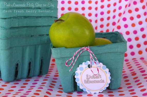 12 FARM FRESH BERRY Baskets-Party Favors-Weddings-Showers--Add Cookies, Cupcakes, Fruit or Gifts-