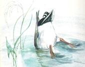 Duck Duck Vintage Illustrated Children's Book Edna Miller