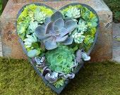 Succulent Centerpiece Succulent Heart Shape Succulent Arrangement Succulent Wedding Succulent Planter