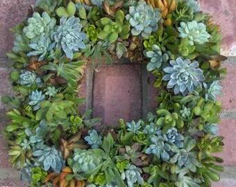 "Square Succulent Wreath -Fathers Day Succulent Wreath - 15"" Square Succulent Wreath for Fathers Day ,Wedding Decor, Wedding Centerpiece"