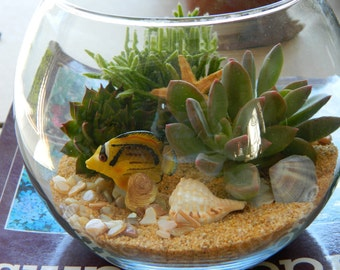 Succulent Terrarium - Succulent Tabletop, Wedding Centerpiece, Special Events Centerpiece, Succulent Planter, Succulent Garden