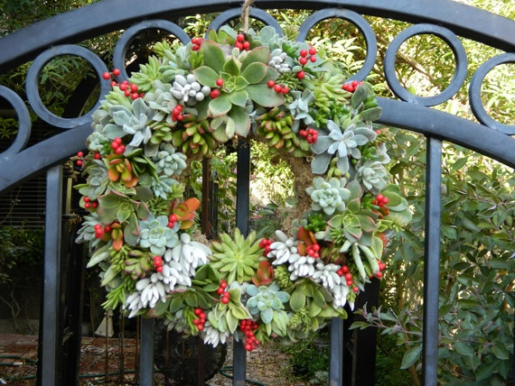 """Succulent Wreath Holiday Succulent Wreath  - 15 """" Round Succulent Wreath Perfect Christmas Gift or Christmas Decor"""