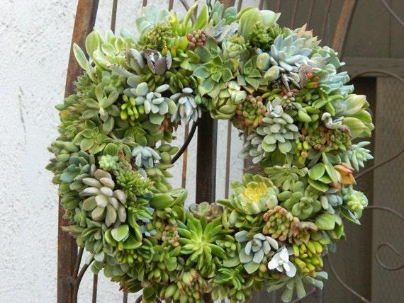 "Succulent Wreath - 15"" Round Succulent Wreath - Round Succulent Wreath"