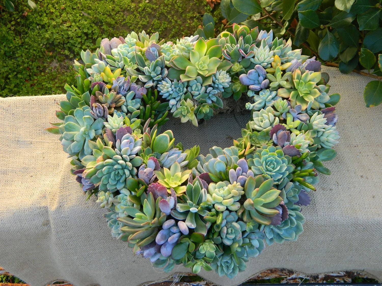 succulent wreath heart shaped succulent wreath wedding. Black Bedroom Furniture Sets. Home Design Ideas