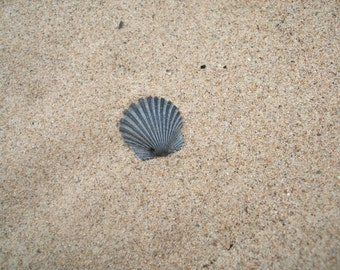 Ultra Fine Beach Sand 1LB