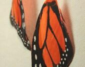 Orange Monarch Butterfly Wing Earrings