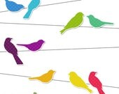 Rainbow Bird Silhouettes on Wire Digital Clipart Set - Ideal for Scrapbooking, Card Making and Paper Crafts, Clip Art