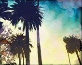 Palm Tree Photography, California Palm Tree Photo, Retro Beach Wall Art, Venice Beach, Bokeh