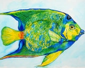 Queen Angelfish Watercolor