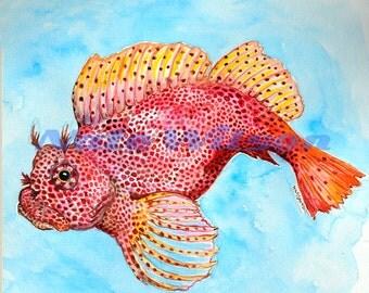 Leopard Blenny Watercolor