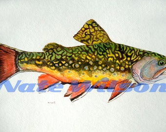 "Brook Trout Watercolor- 12"" x 18"""