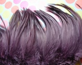 F4- AweSomE Lilac/Lavender/Amethyst Furnace Rooster Hackle.. 4-6 Inches Long...Gorgeous...CHIRP..XO