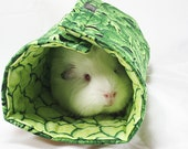 Guinea Pig Roll-ups