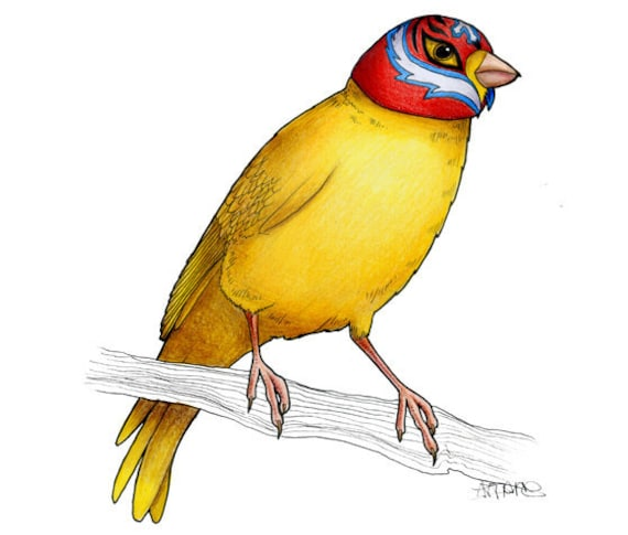 Canary in a Wrestling Mask  - A4 archival quality print